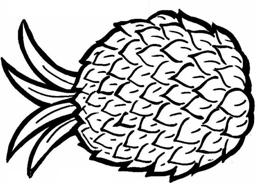 coloring pineapple clipart pineapples drawing at getdrawings free download coloring clipart pineapple