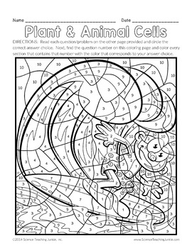 coloring plant and animal cells animal and plant cells worksheet unique 12 best of animal coloring cells animal plant and