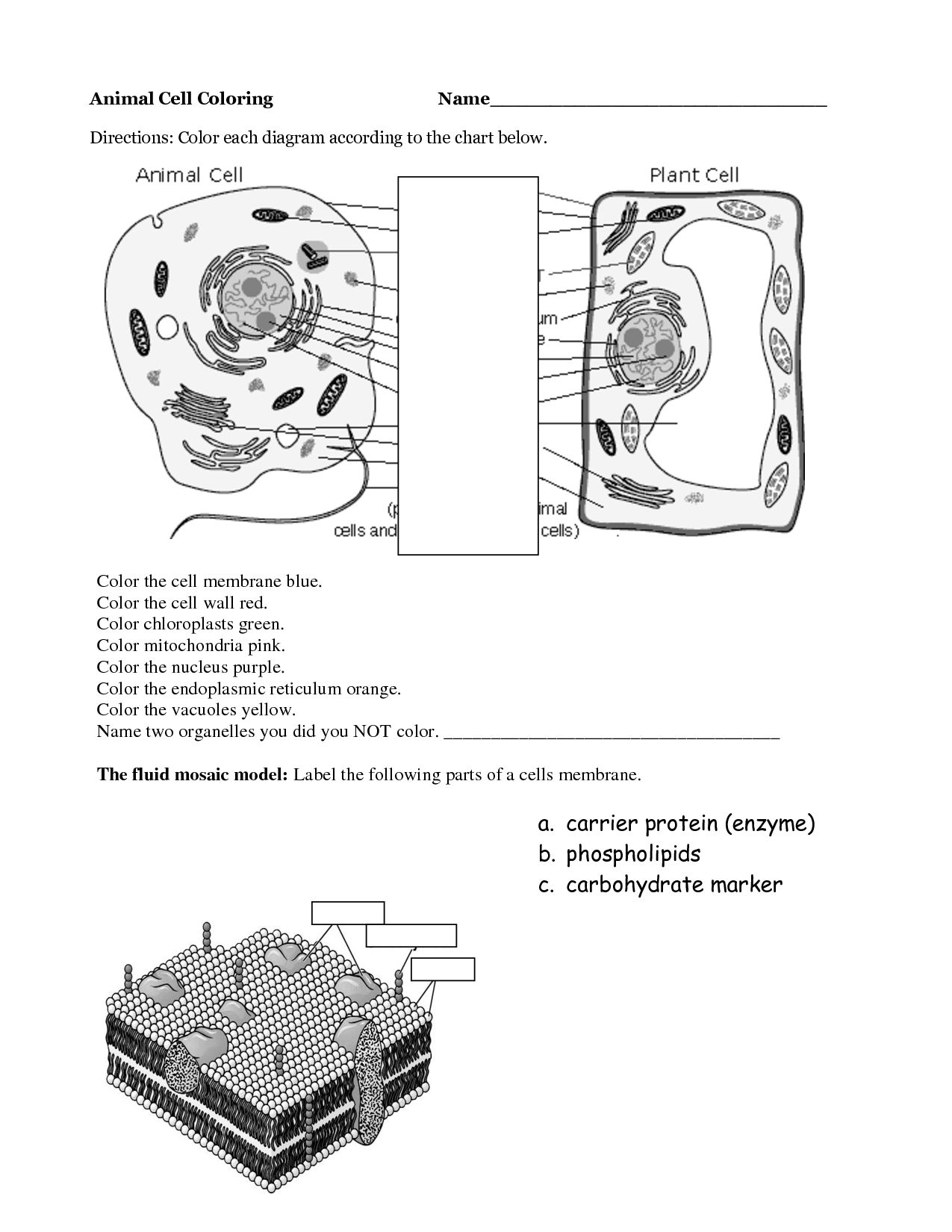 coloring plant and animal cells mitochondria coloring pages and cells coloring plant animal