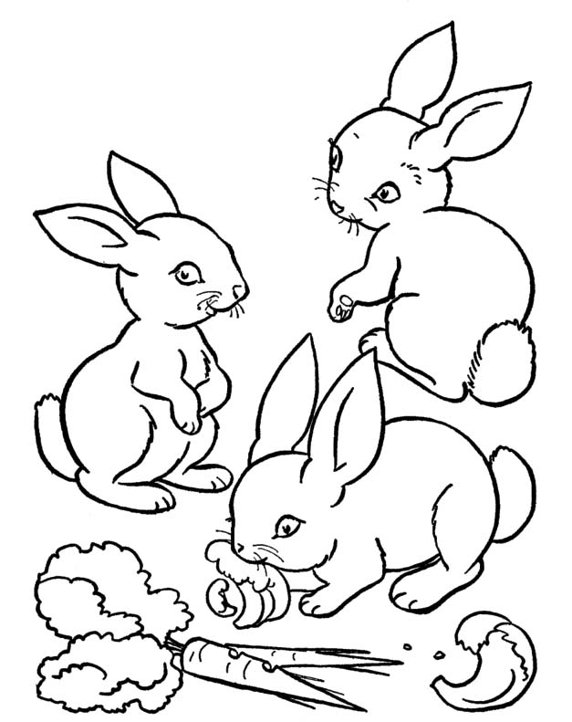 coloring rabbit burrow outline coloring page rabbit and burrow coloring pages outline burrow coloring rabbit