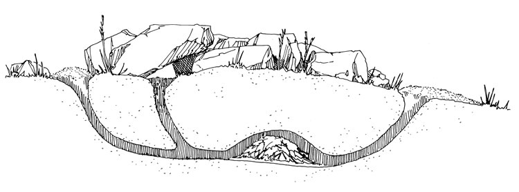 coloring rabbit burrow outline coloring page rabbit and burrow coloring pages rabbit coloring burrow outline