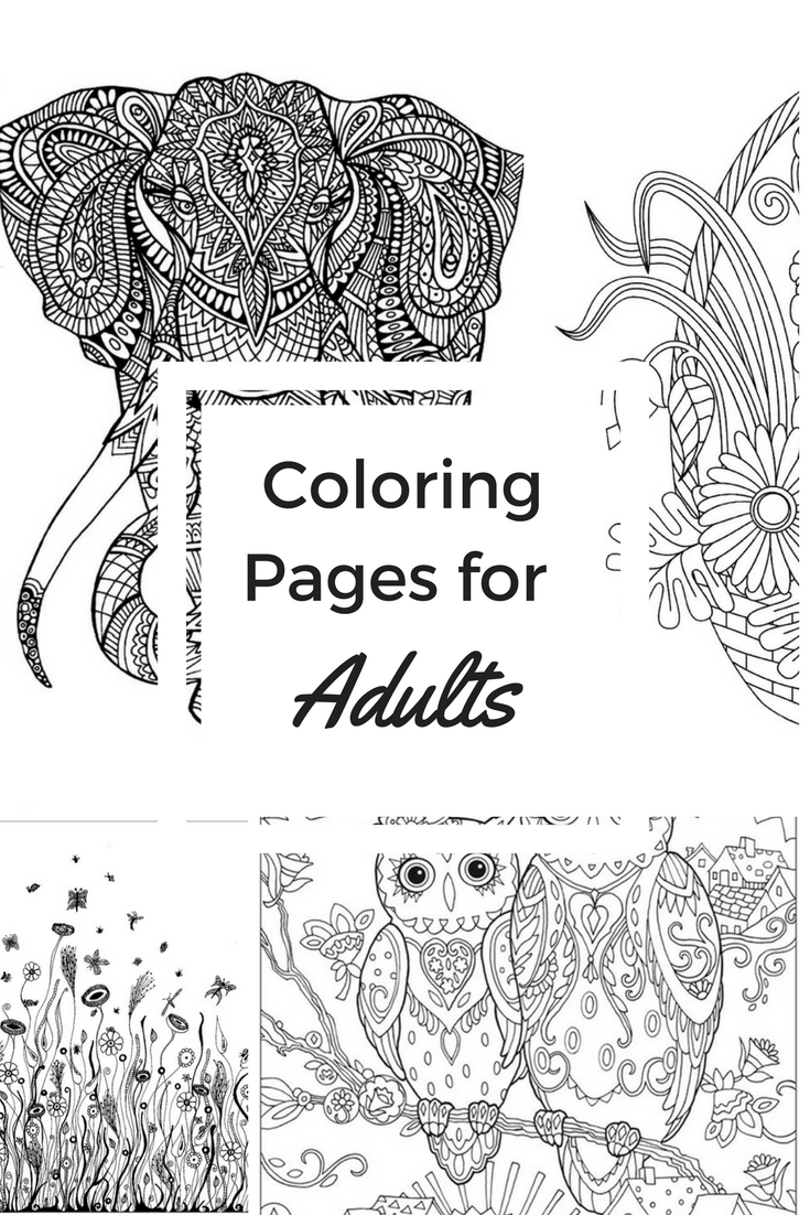 coloring with markers 24 adult coloring book markers in 2020 with images with coloring markers