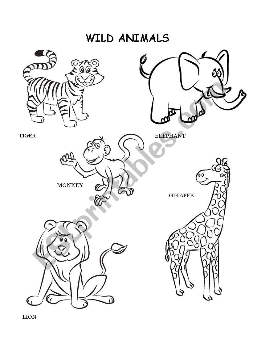 coloring worksheet animal animals trace and color esl worksheet by karendiana coloring worksheet animal