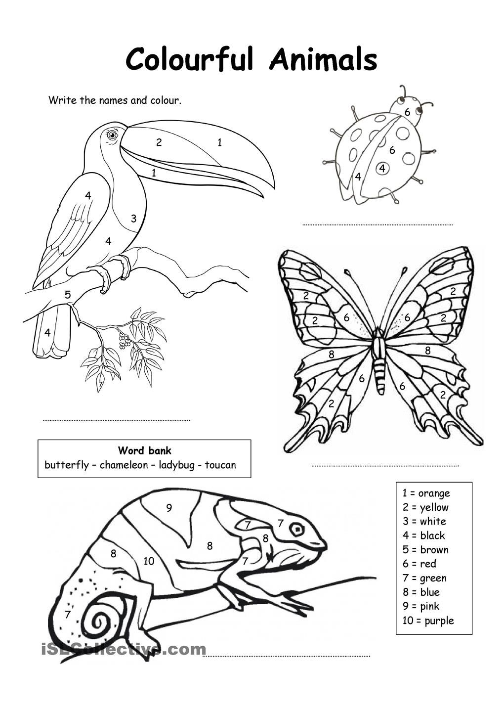 coloring worksheet animal colour by numbers colourful animals color by numbers coloring animal worksheet