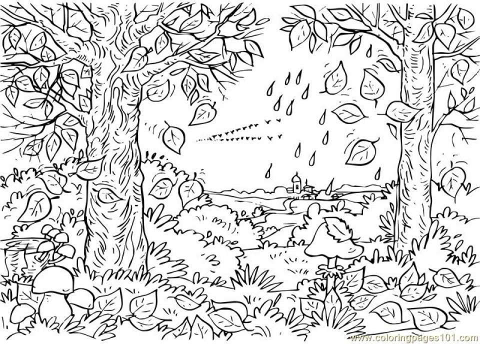coloring worksheets nature set of 4 assorted nature scenes coloring by triciagriffitharts nature worksheets coloring