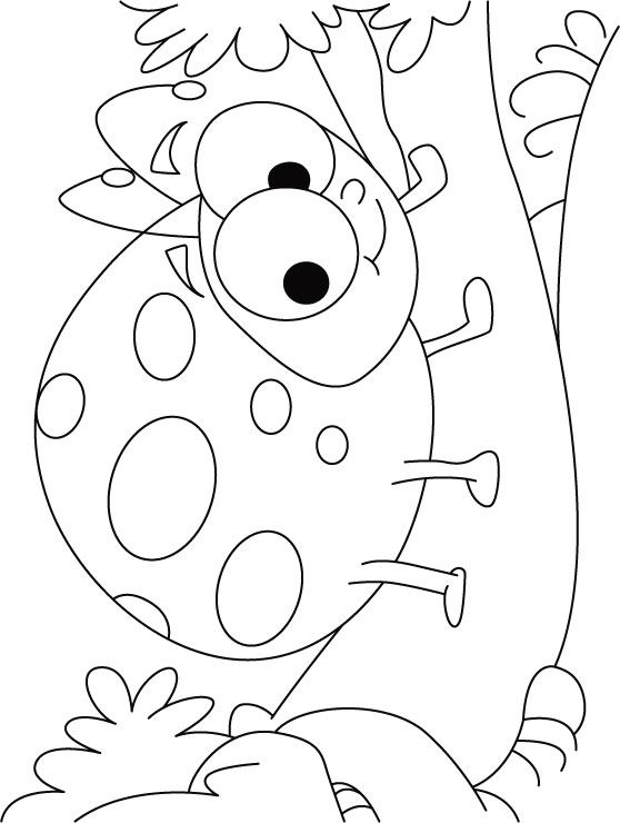 colouring ladybird ladybug cartoon drawing at getdrawings free download ladybird colouring