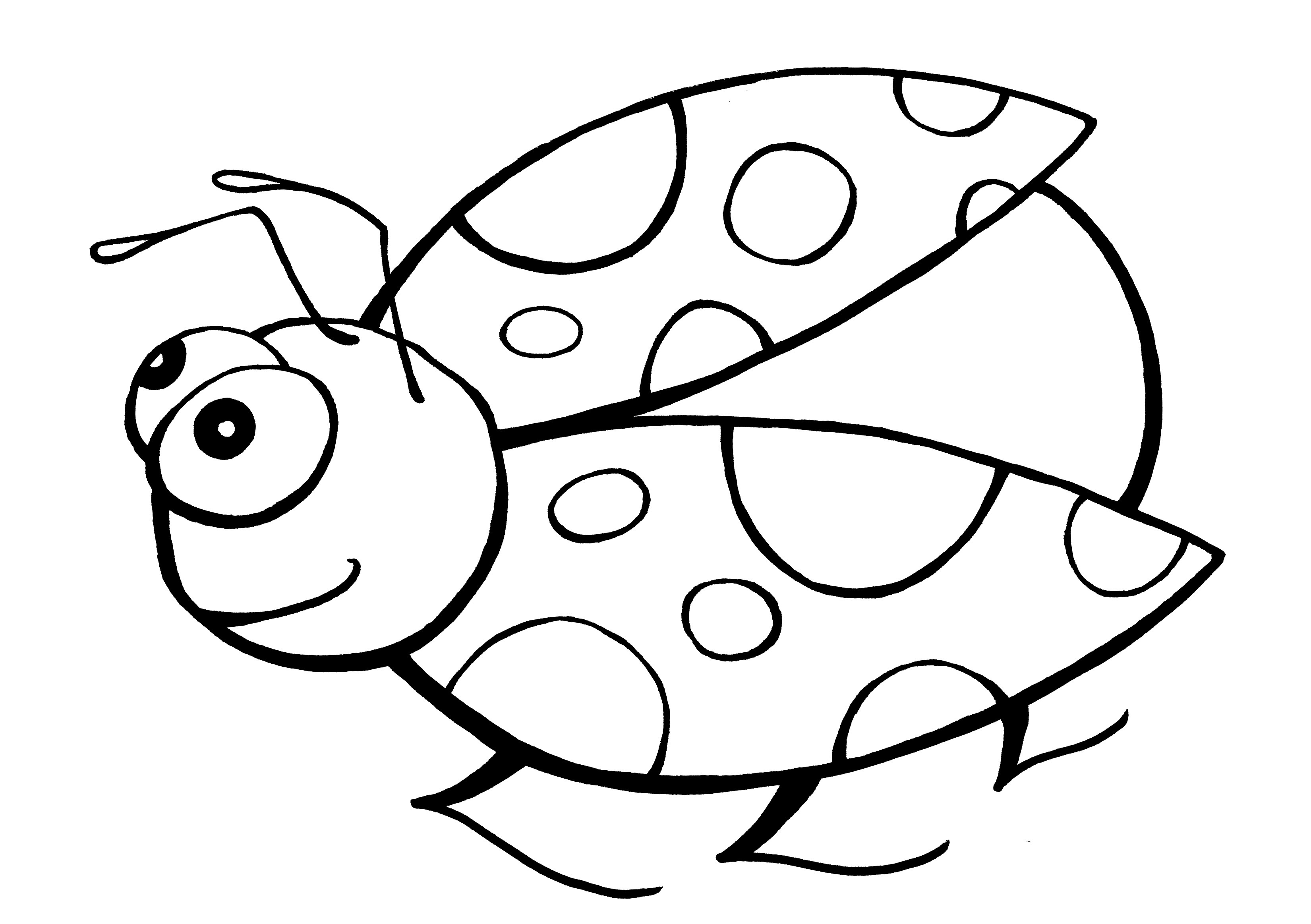 colouring ladybird ladybug coloring page printable spring coloring ebook colouring ladybird