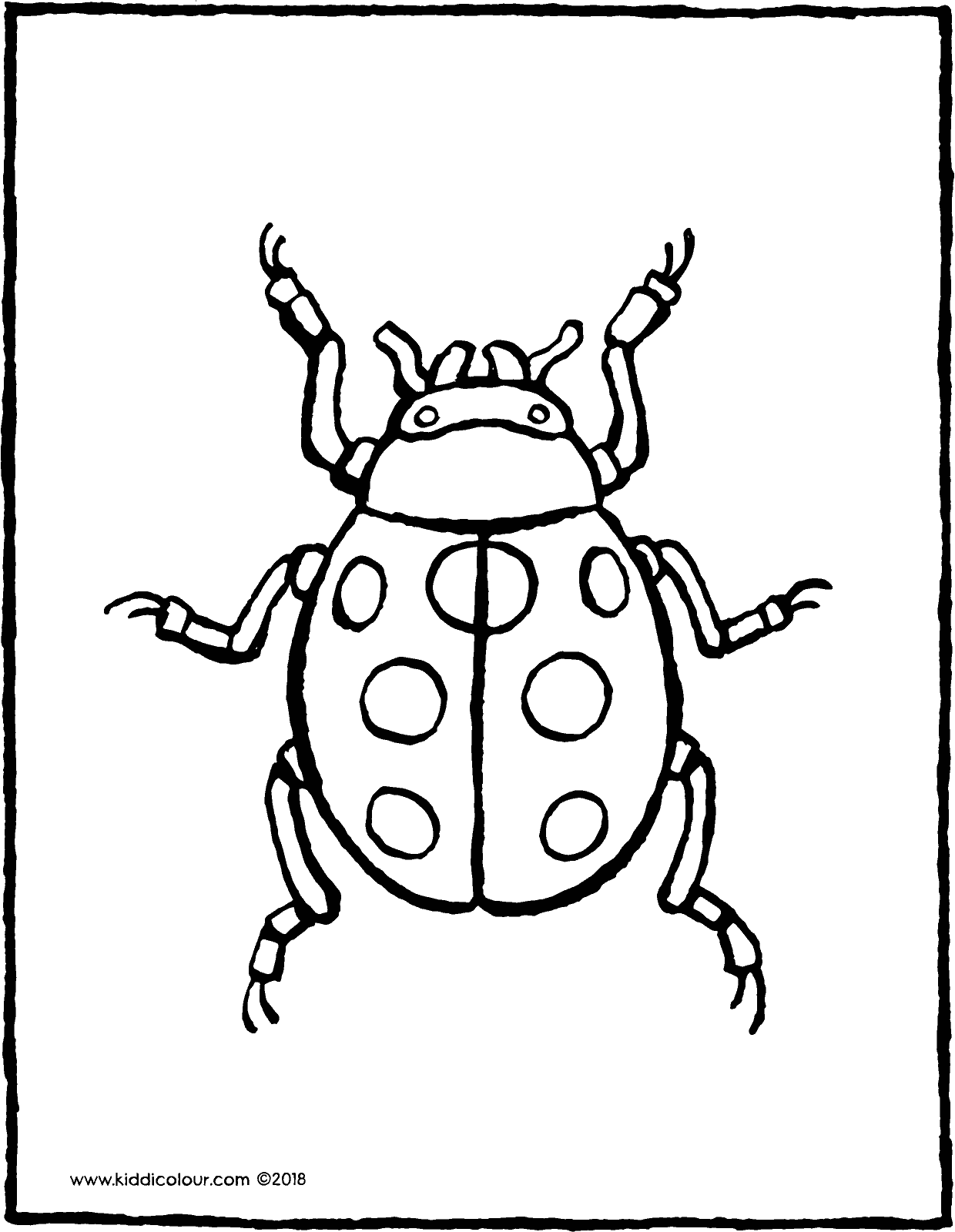 colouring ladybird ladybug coloring pages coloringrocks ladybird colouring