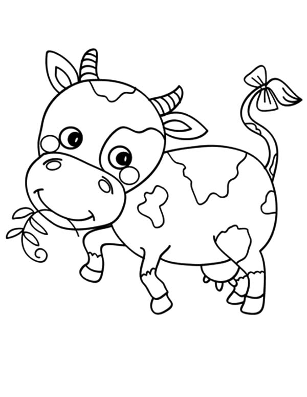 cow coloring page kids n funcom 19 coloring pages of cows cow coloring page
