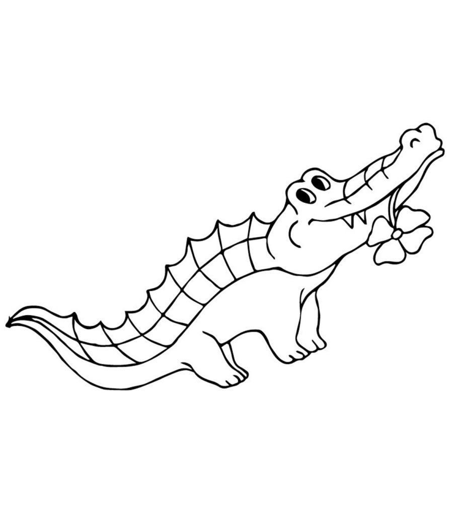 crocodile coloring pages to print top 25 free printable alligator coloring pages online crocodile print to coloring pages
