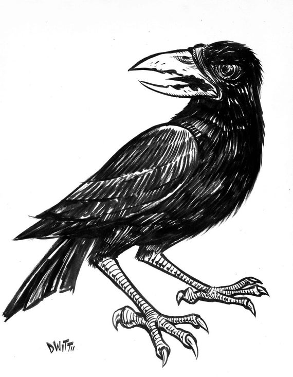 crow drawing how to draw a realistic crow draw crows step by step drawing crow 1 2