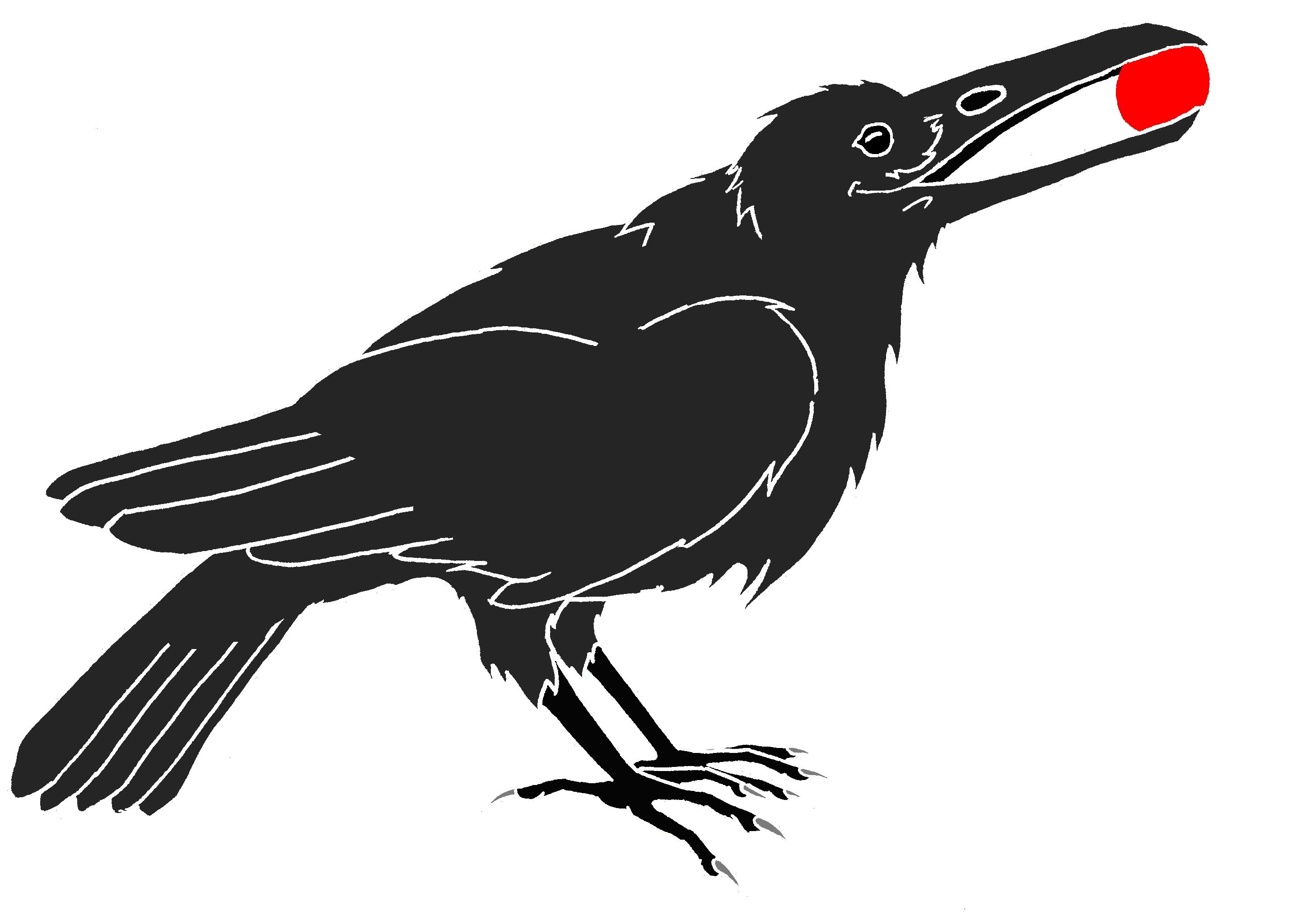 crow drawing northwest crow drawing by charlie potter drawing crow