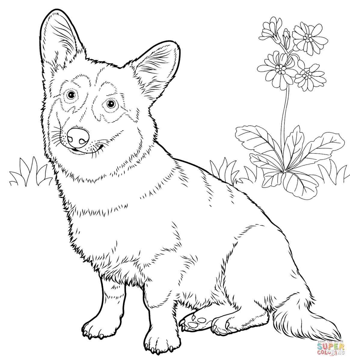 difficult dog coloring pages 17 best images about coloring pages blanks on pinterest pages dog coloring difficult