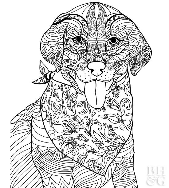 difficult dog coloring pages coloring pages animals hard new hard puppy coloring pages dog difficult pages coloring