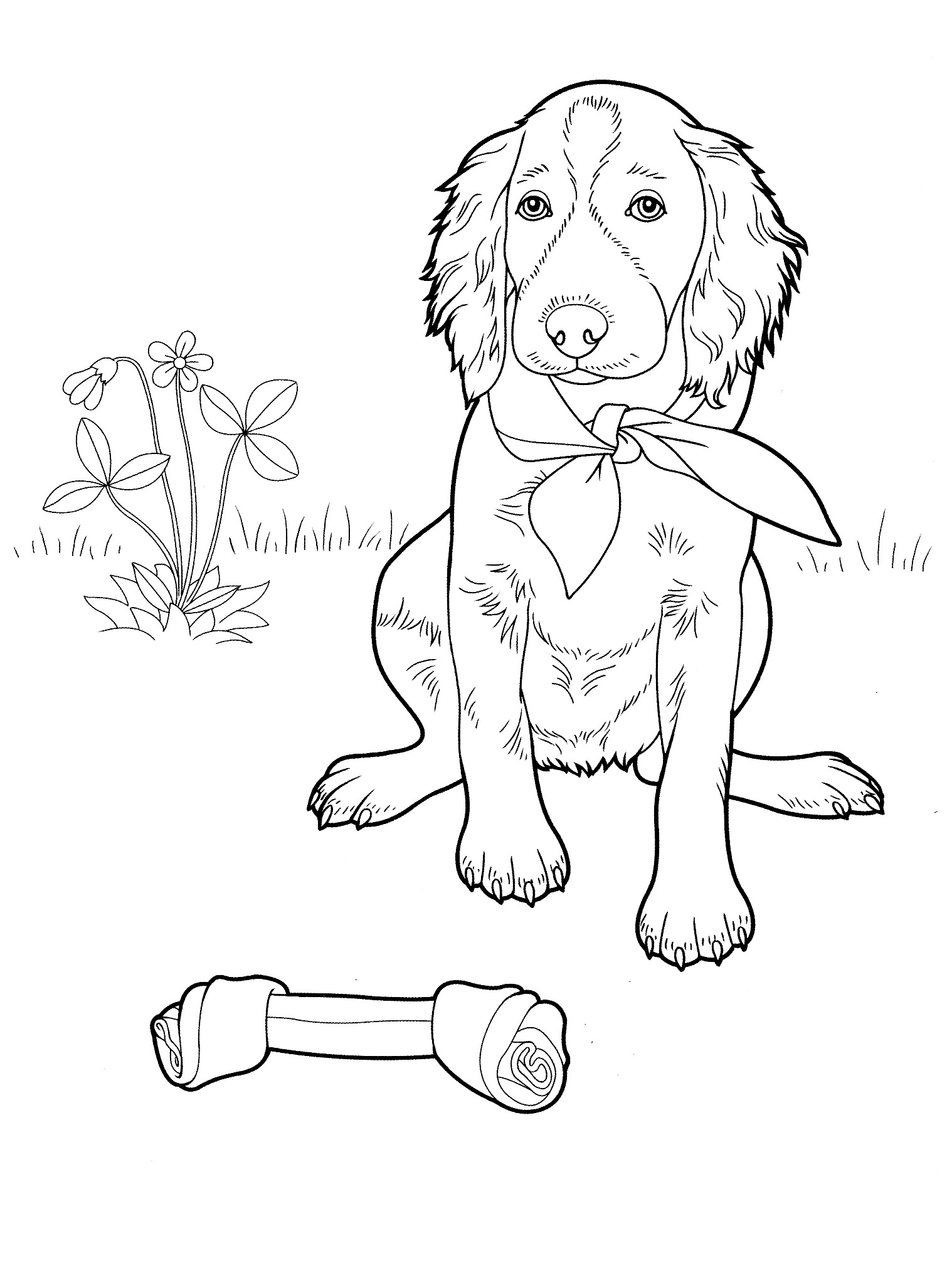 difficult dog coloring pages hard dog coloring pages at getdrawings free download pages dog difficult coloring