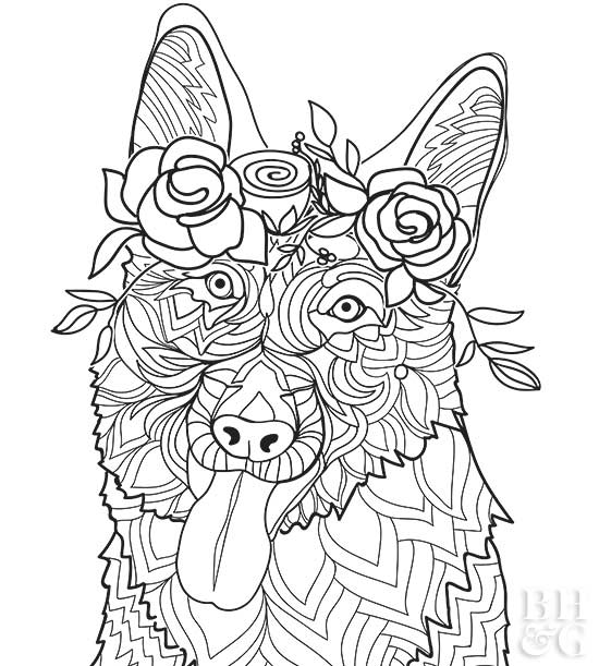 difficult dog coloring pages pug coloring pages pug skecth of pug dog coloring page coloring difficult dog pages