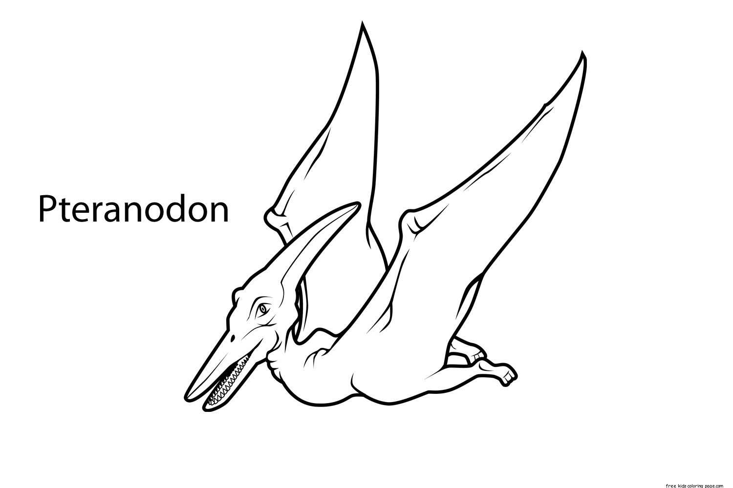 dinosaur with names coloring pages printable pteranodon dinosaur coloring pages for kidsfree with pages names dinosaur coloring