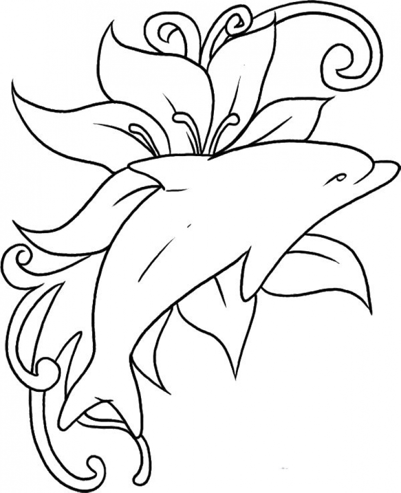 dolphin coloring pictures to print dolphin coloring pages to coloring pictures dolphin print