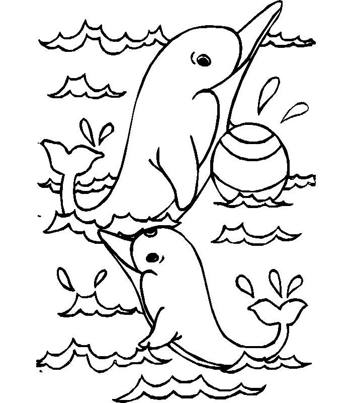 dolphin colouring a couple of dolphins coloring pages dolphin colouring