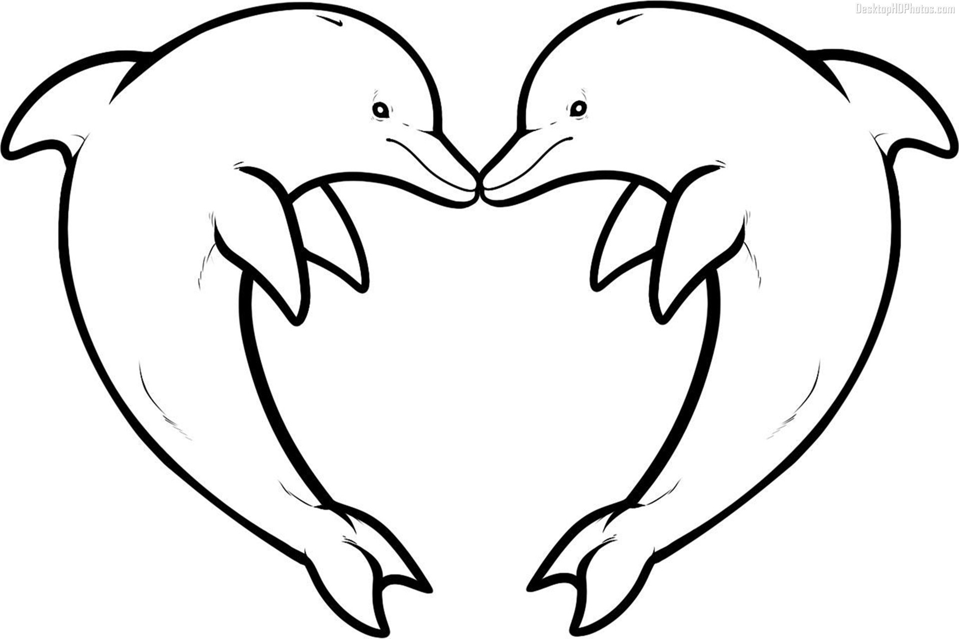 dolphin colouring dolphin template animal templates free premium templates dolphin colouring