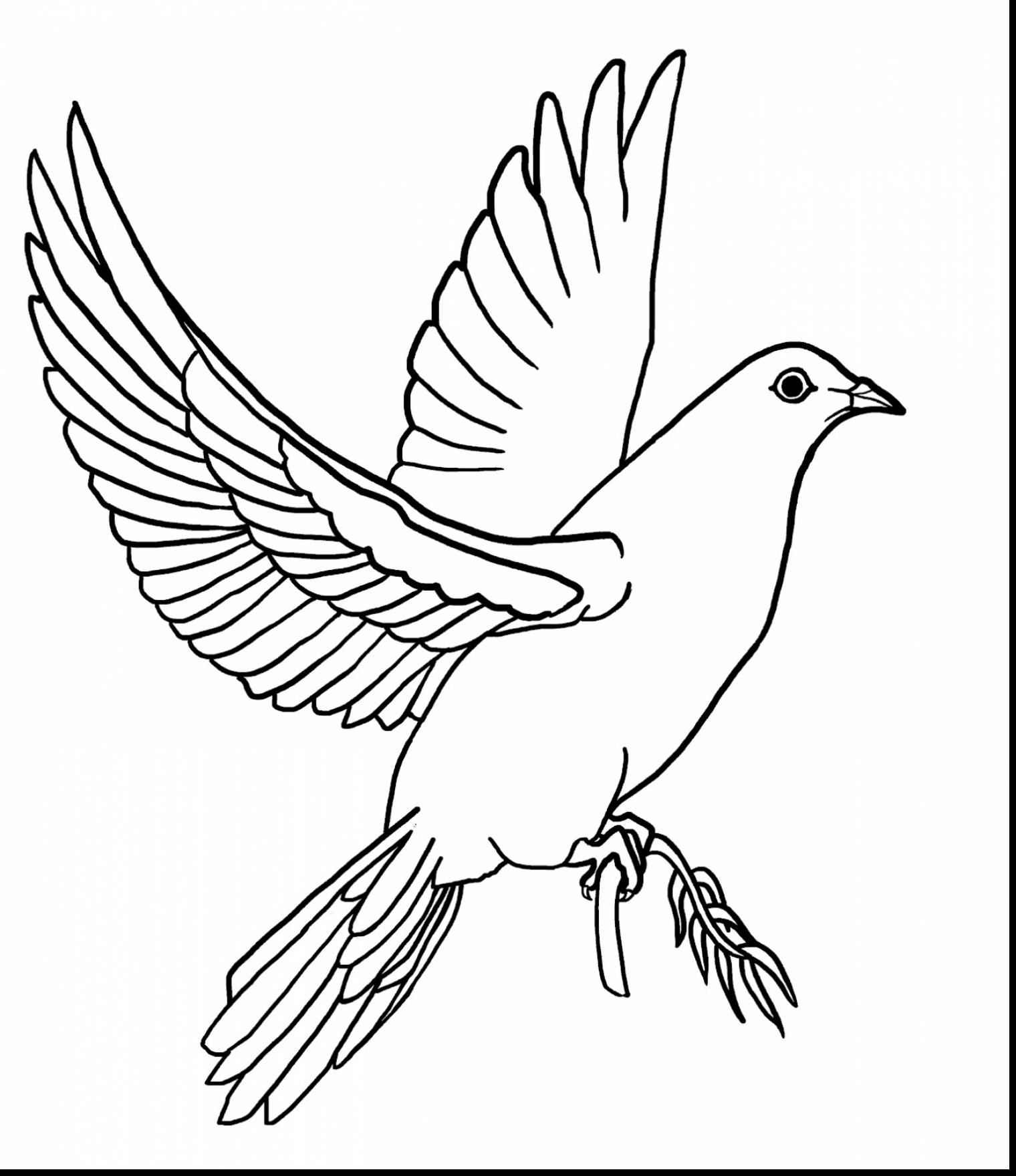 dove coloring page dove coloring pages download and print dove coloring pages page coloring dove