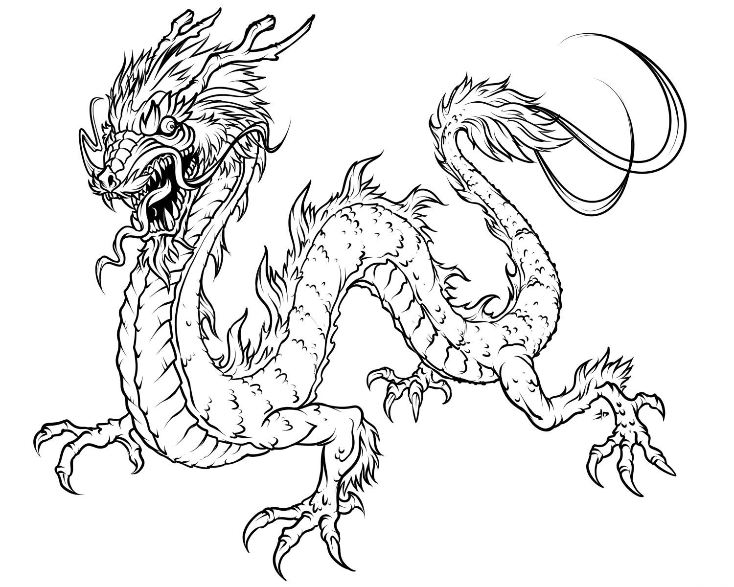 dragon for coloring scary dragon dragons adult coloring pages coloring dragon for