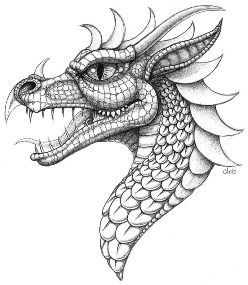 dragon head coloring pages japanese dragon head drawing at getdrawings free download pages dragon head coloring