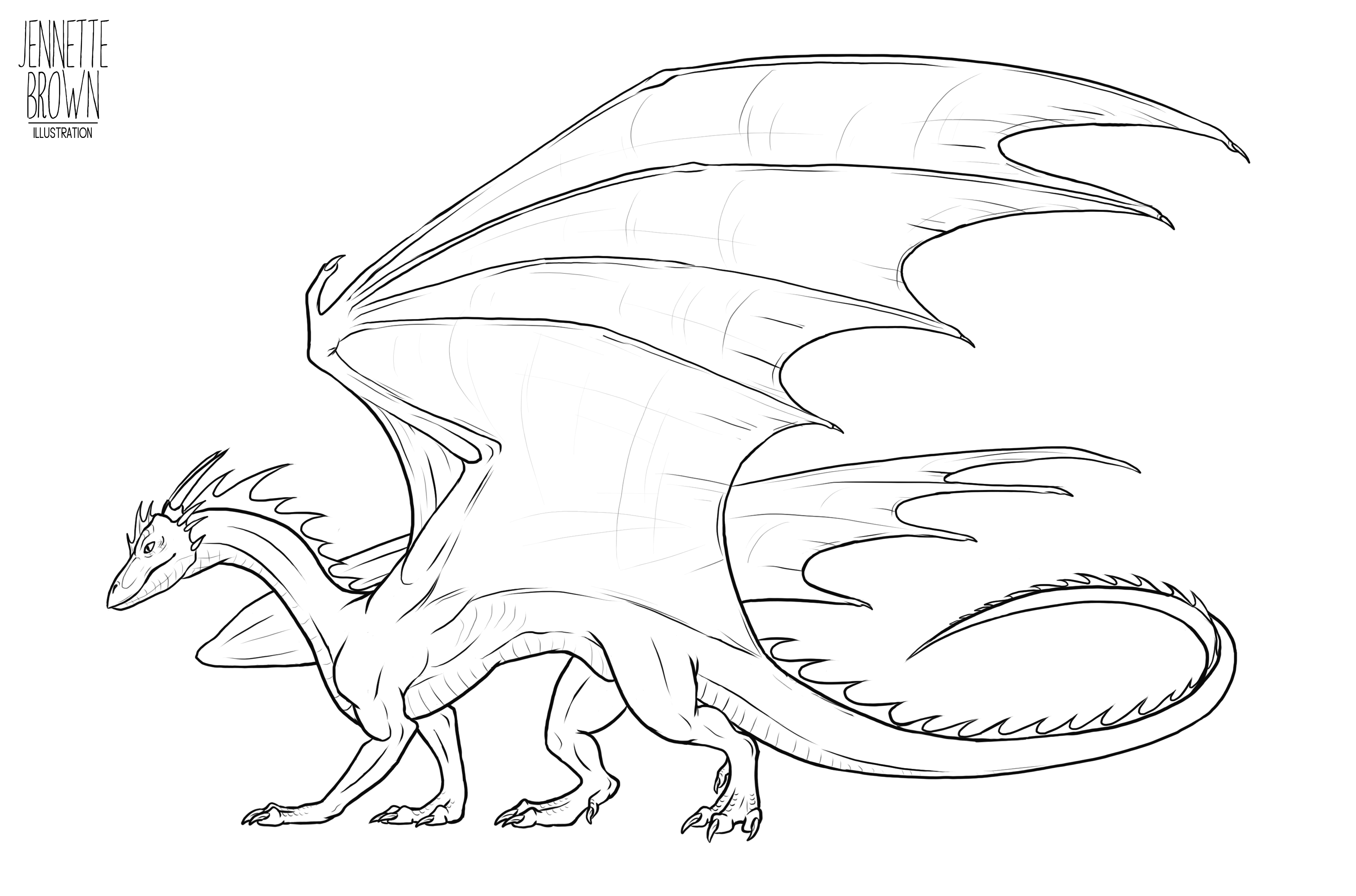 dragon outline lying dragon outlines by starfighter suicune on deviantart outline dragon