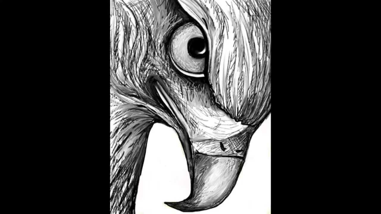 drawing of a hawk how to draw a hawk in pencil youtube a drawing hawk of