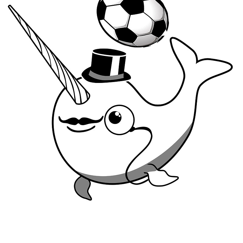 drawings of narwhals narwhal cartoon drawing at getdrawings free download narwhals of drawings