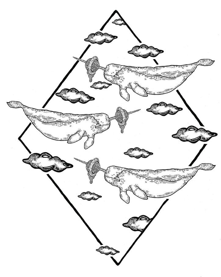 drawings of narwhals narwhal coloring page cross stitchneedlepoint narwhal of drawings narwhals