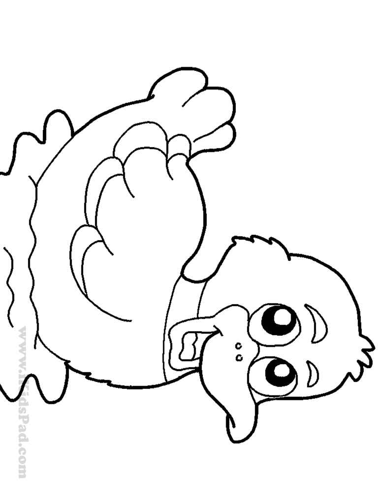 ducks coloring pages 5 little ducks ducks coloring pages