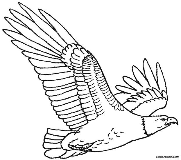 eagle color page eagle coloring page 1 audio stories for kids free color page eagle