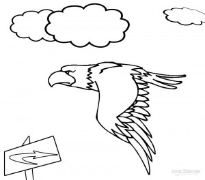 eagle color page eagle coloring pages for adults at getcoloringscom free page eagle color