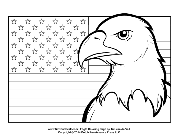 eagle color page eagle printable coloring pages at getdrawingscom free page eagle color