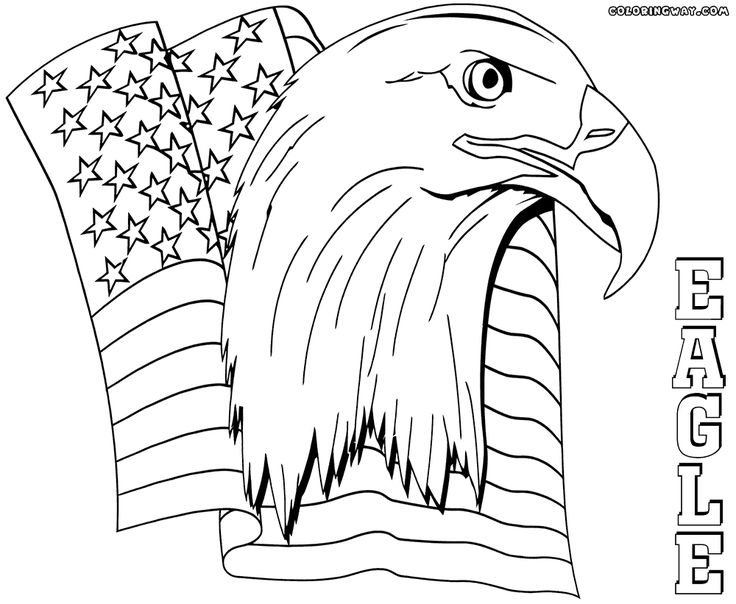 eagle color page free eagle coloring pages ideas for preschool preschool eagle color page