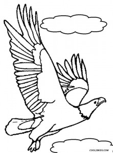 eagle color page printable bald eagle coloring pages for kids cool2bkids color eagle page