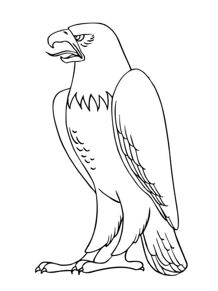 eagle coloring images eagle coloring pages download and print eagle coloring pages coloring eagle images