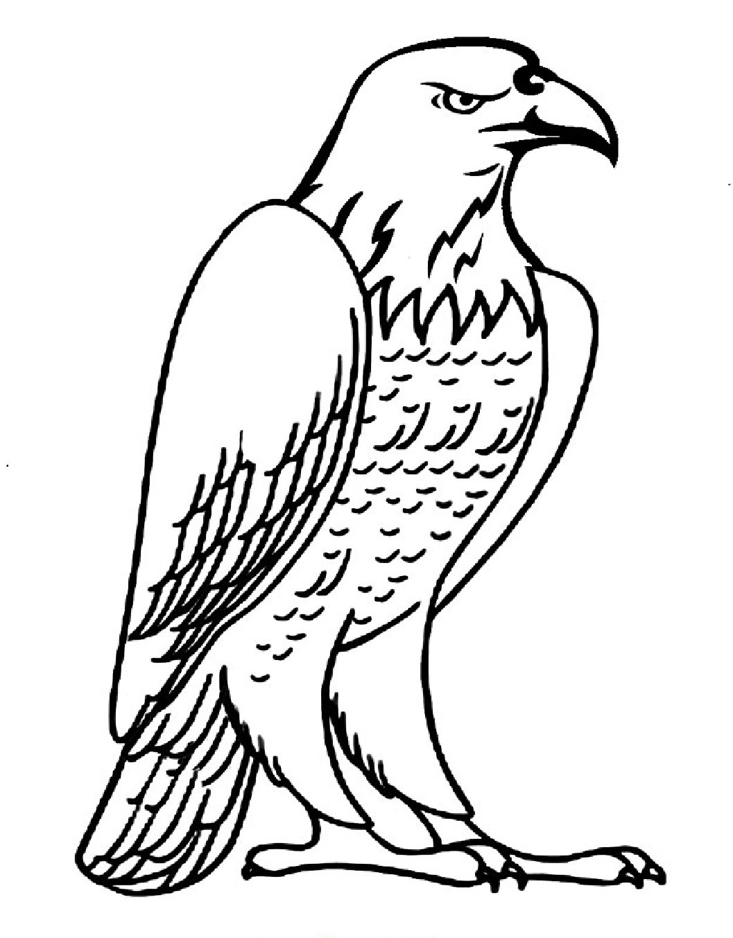 eagle coloring images free eagle coloring pages images eagle coloring