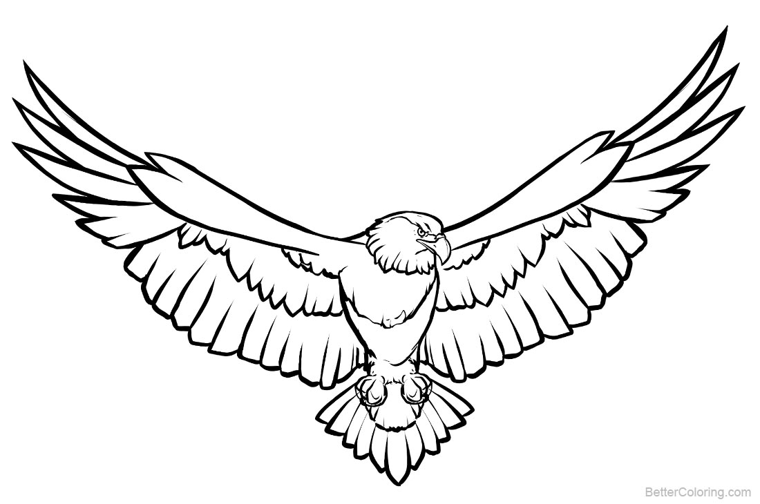 eagle coloring images soaring eagle coloring pages line art free printable coloring images eagle