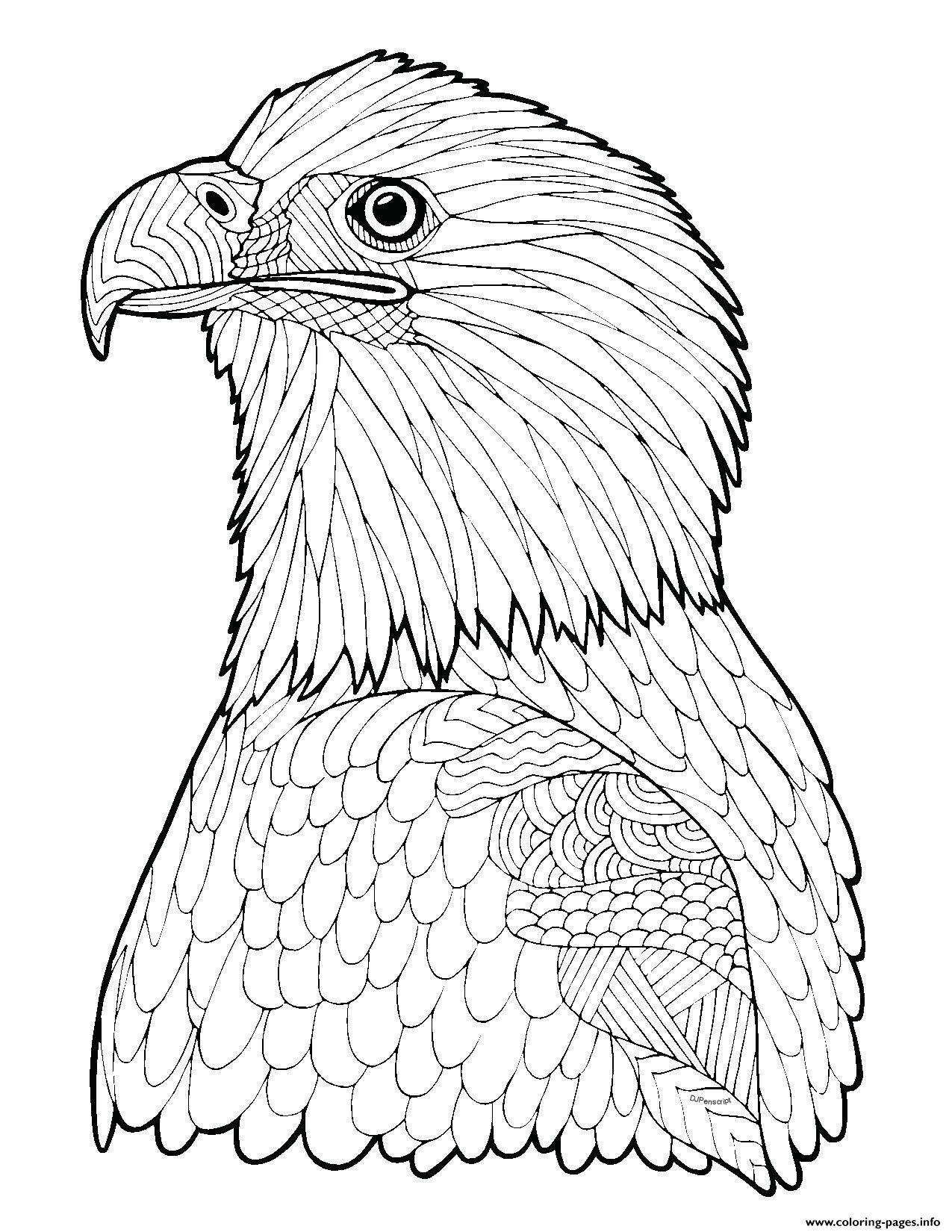 eagle coloring picture free eagle coloring pages eagle coloring picture