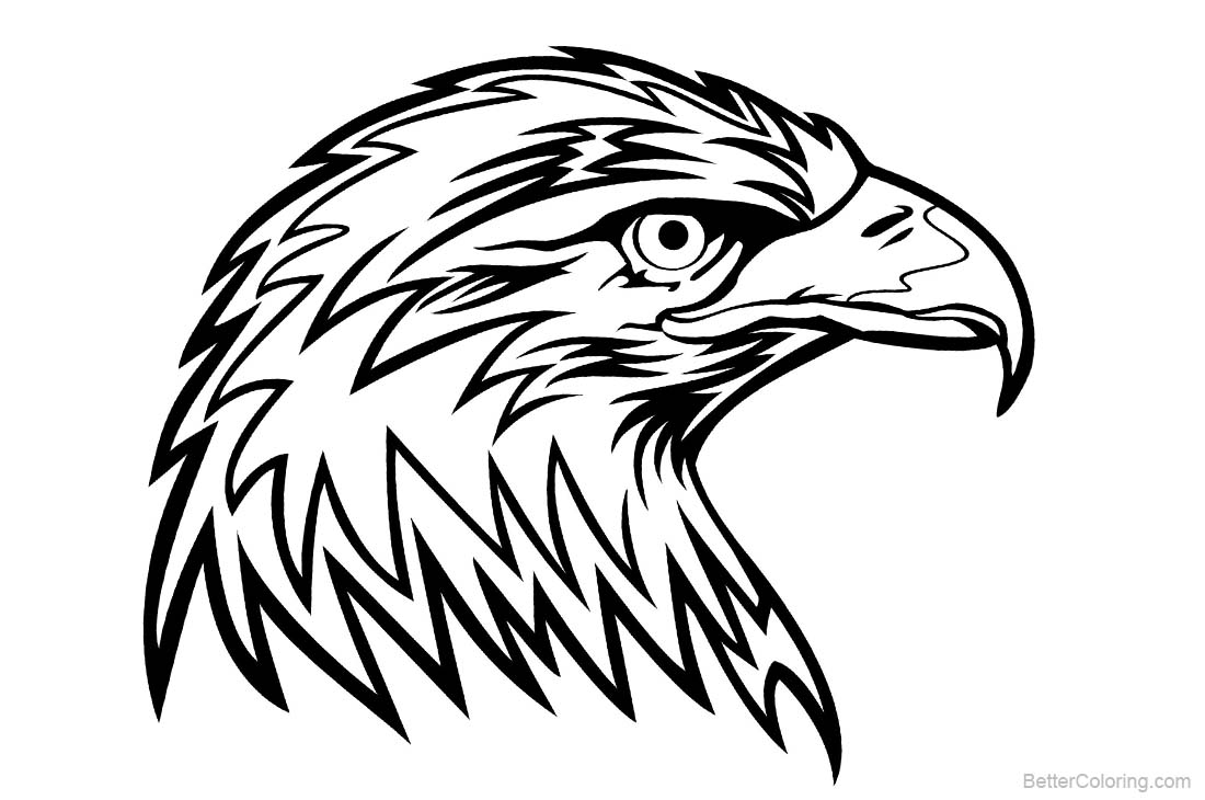 eagle head coloring pages eagle head coloring pages getcoloringpagescom eagle coloring head pages