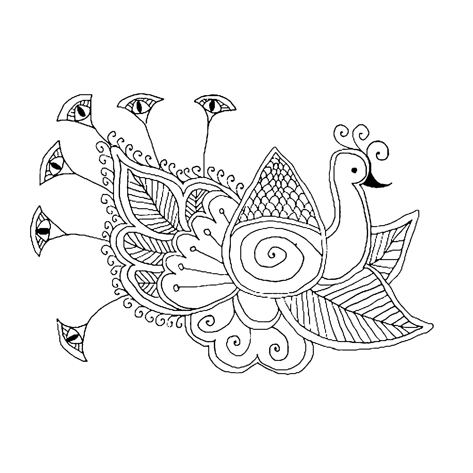 easy printable peacock coloring pages free printable peacock coloring pages for kids peacock printable easy coloring pages