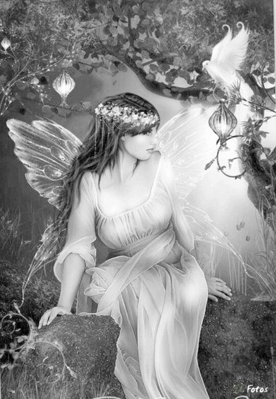 fairy grayscale coloring pages coloring for adults kleuren voor volwassenen grayscale pages fairy coloring grayscale 1 1