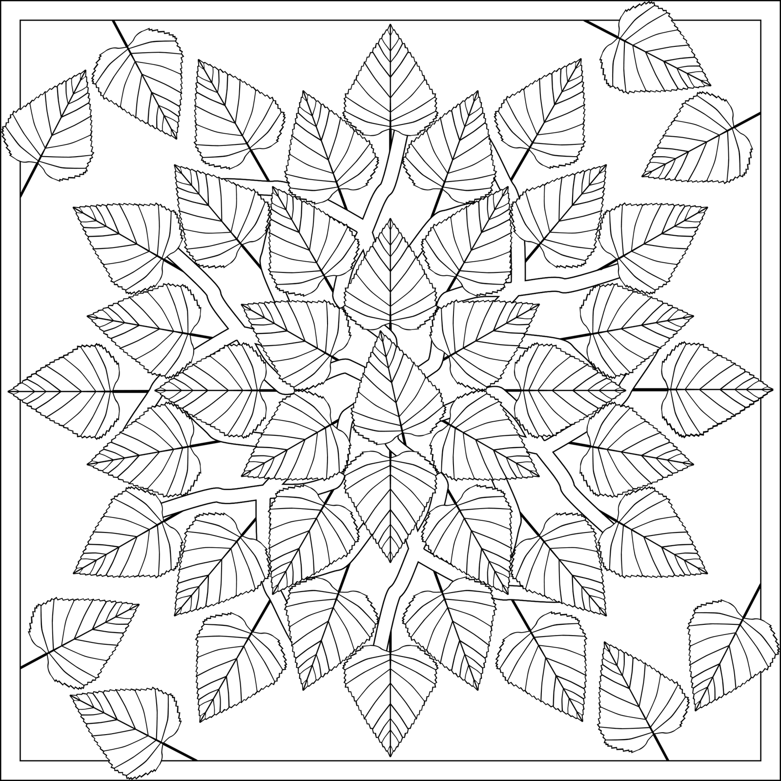fall leaves coloring 5 best images of printable autumn leaves fall leaves leaves fall coloring
