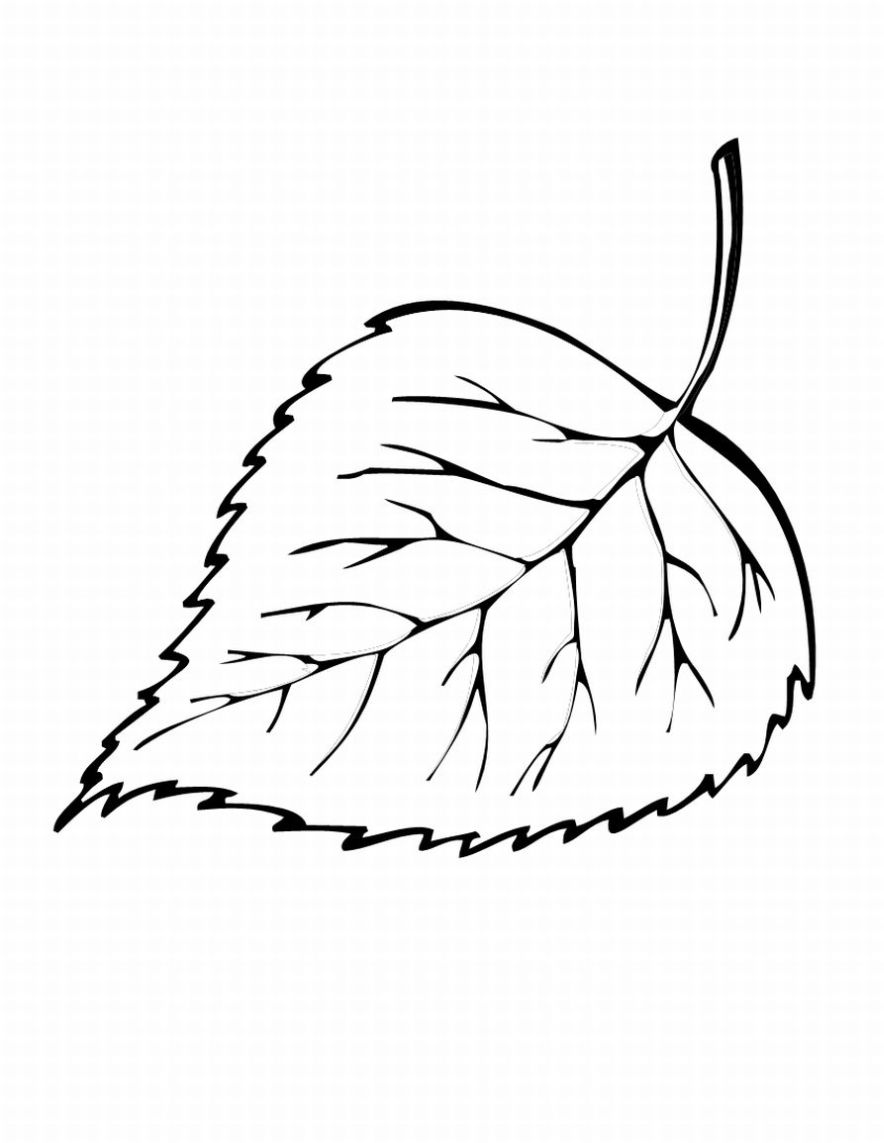 fall leaves coloring 5 free fall coloring sheets autumn season coloring pages fall leaves coloring
