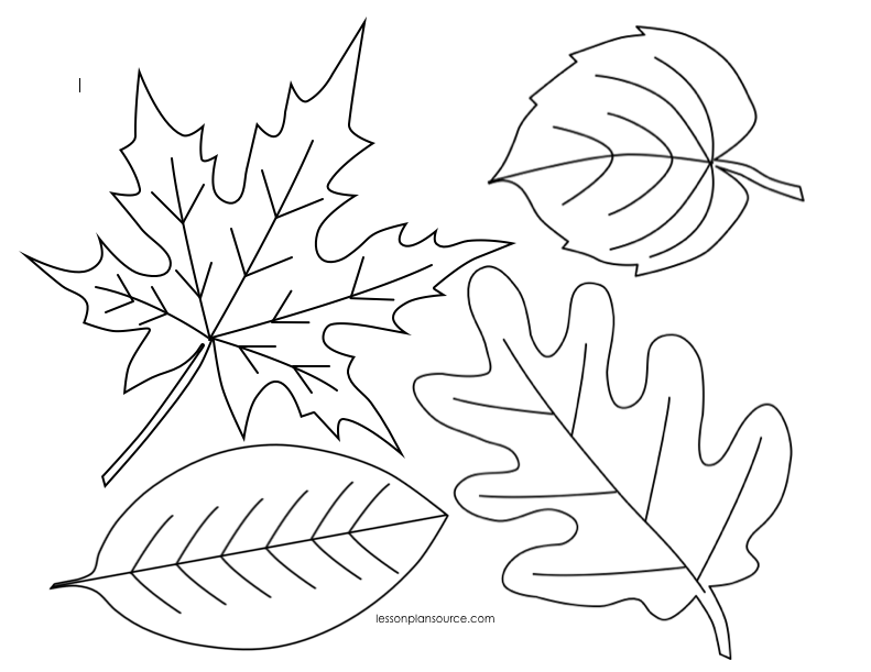fall leaves coloring fall leaves coloring pages for kindergarten at leaves coloring fall