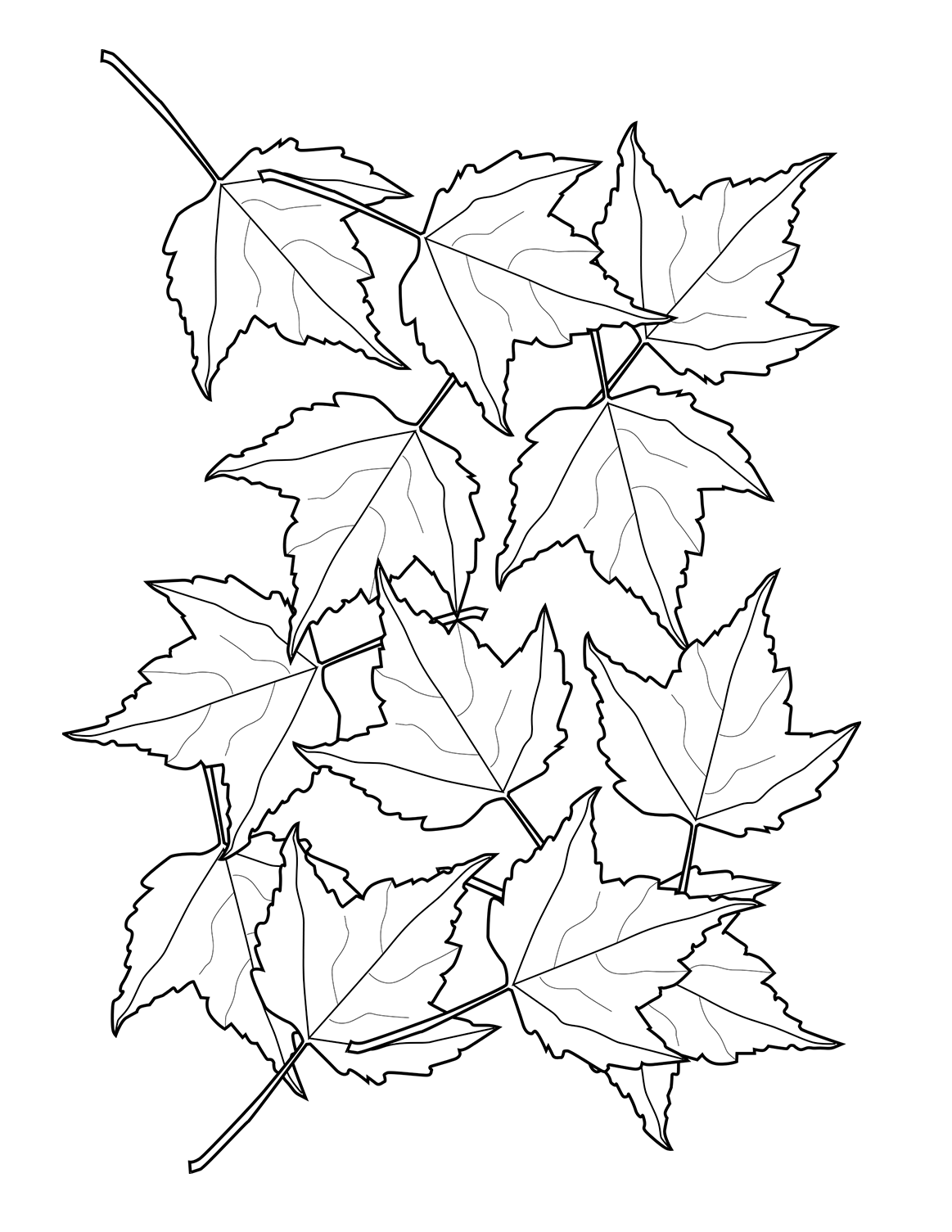 fall leaves coloring printable fall leaves patterns and learning activities o leaves coloring fall