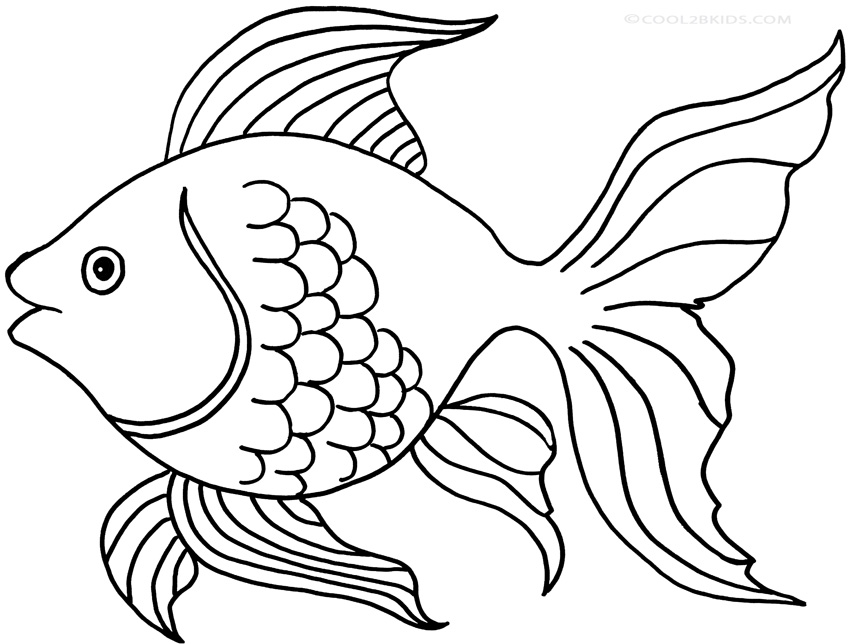 fish color print download cute and educative fish coloring pages fish color 1 4