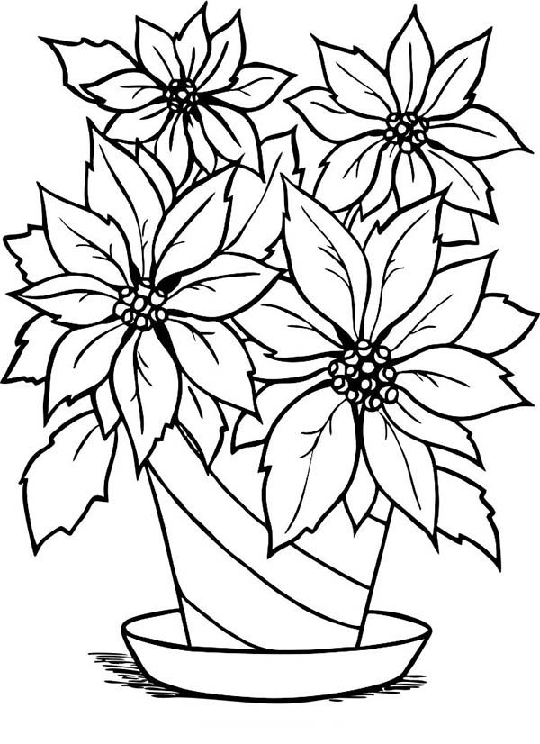 flower coloring book pages charming poinsettia flower in flowerpot coloring page pages book flower coloring